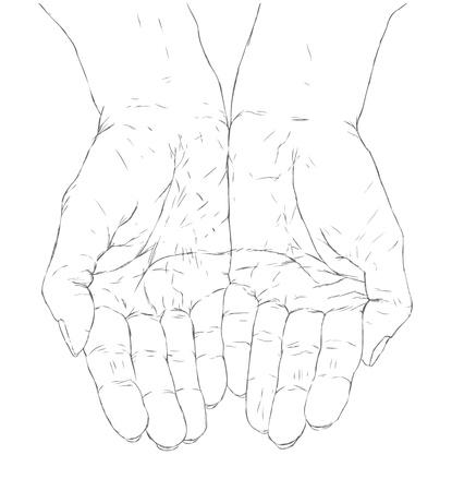 cupped manos femeninas
