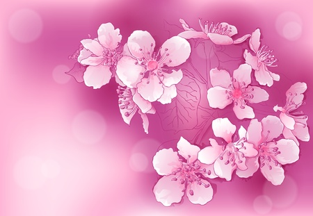 cherry branch: abstract background with pink blossoms Illustration