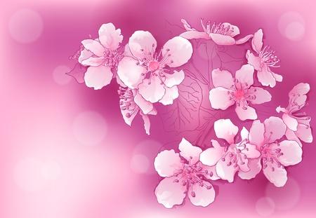 fleur de cerisier: contexte abstrait avec des fleurs roses Illustration