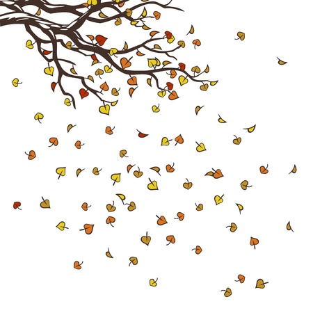 branches with falling autumn leaves over white background