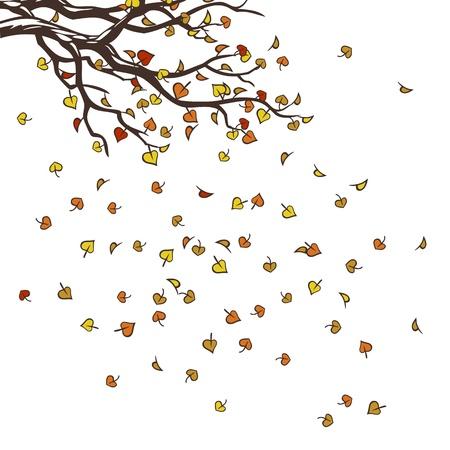 hojas de oto�o cayendo: ramas con hojas de oto�o cayendo sobre el fondo blanco