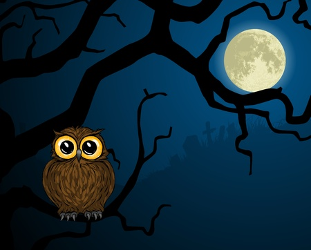 Illustration of cute little owl on branch and full moon