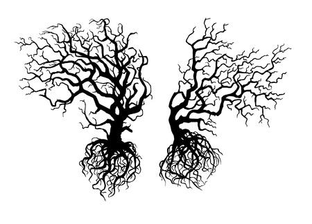 kale: Silhouetten van twee oude scheve bomen