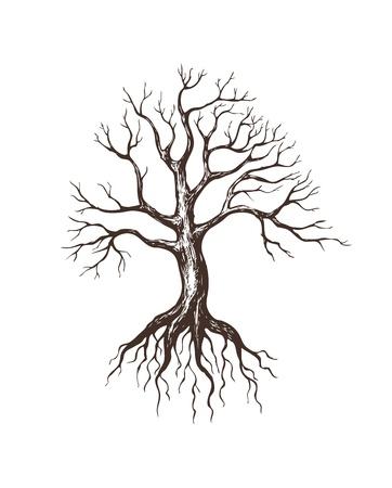 illustratie van de grote kale boom Stock Illustratie