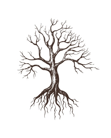 tree roots: illustration of big leafless tree Illustration
