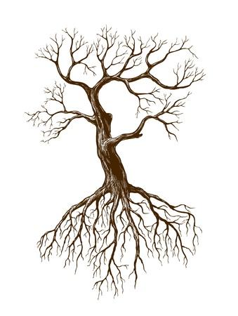kale: illustratie van de grote kale boom Stock Illustratie