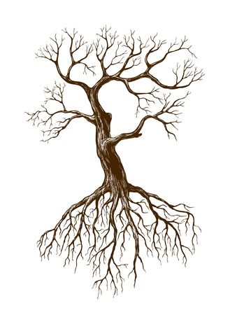 bare tree: illustration of big leafless tree Illustration