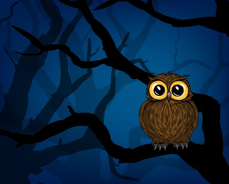 scary forest: Illustration of cute little owl in the forest at night