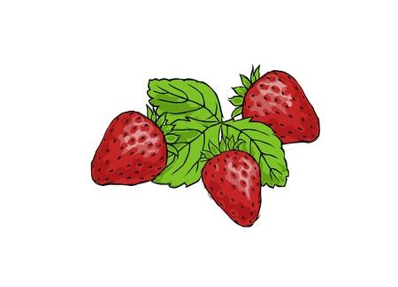 trois fraises juteuses