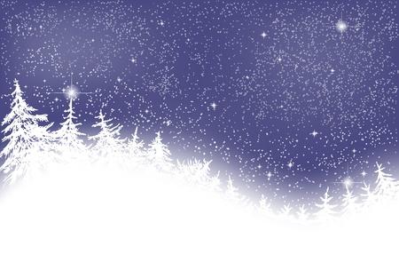 nuit hiver: Nuit d'hiver avec des sapins et des �toiles Illustration