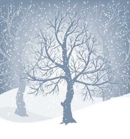 나무와 떨어지는 눈과 겨울 풍경