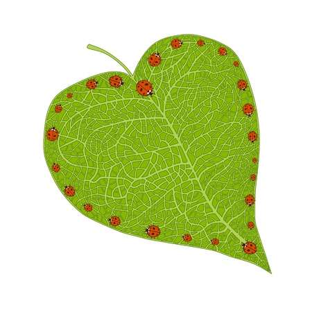 passion ecology: heart shaped leaf with ladybugs forming a heart Illustration