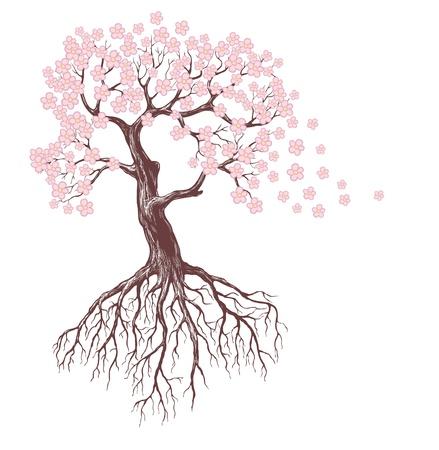 arbol raices: primavera árbol con flores de color rosa