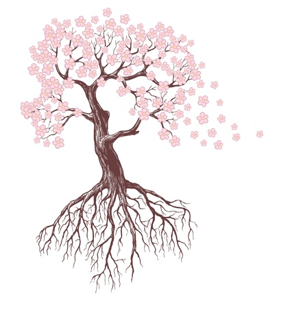 tree roots: spring tree with pink blossoms