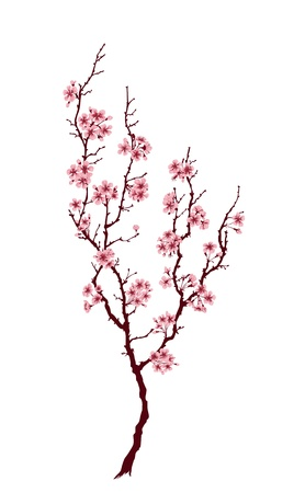 Spring tree with pink blossoms on white background Stock Illustratie
