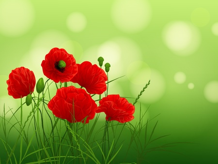 background with poppies and grass Stock Illustratie