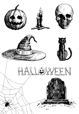 spider net: Hand- drawn Halloween related items