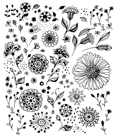 Set of various decorative flowers for design Vector