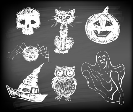 Halloween set. Hand- drawn Halloween related objects  and  animals - skull, cat, pumpkin, hat, ghost, owl and spider on chalkboard background. Vector
