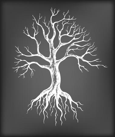 Hand drawn bare tree on chalkboard background.