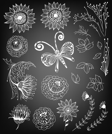 weeds: Set of various hand drawn elements for design- flowers, butterfly and leaves on chalkboard background.