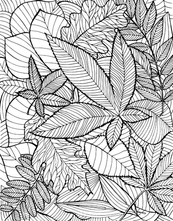 fallen: Hand drawn illustration with various fallen leaves on white background. Illustration