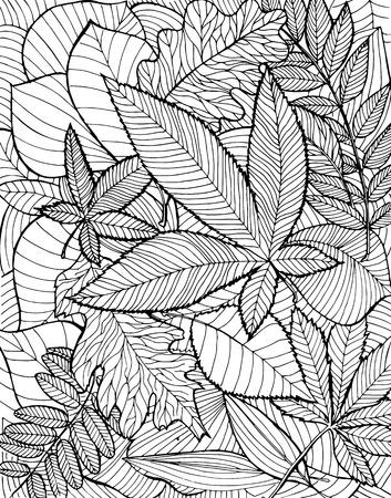 ink illustration: Hand drawn illustration with various fallen leaves on white background. Illustration