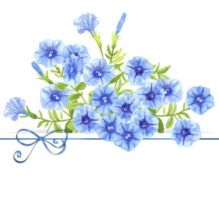 Watercolor petunias. Bouquet of blue petunia flowers and leaves on white background with glossy blue bow an space for text. Illustration