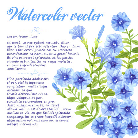 petunia: Watercolor petunias. Bouquet of blue petunia flowers and leaves on white background.