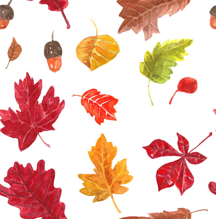 fall leaves: Autumn leaves pattern. Seamless pattern with various hand drawn autumn leaves. Watercolor vector.