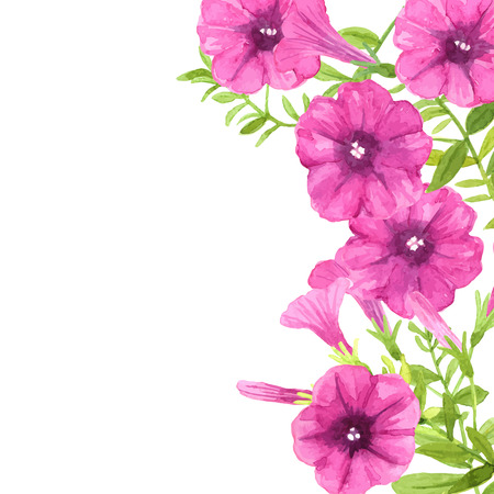 Watercolor petunias. Border made of pink petunia flowers and leaves on white background with space for text.