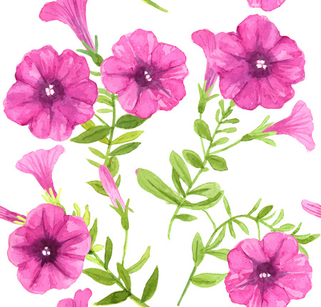 petunia: Petunia flowers pattern. seamless pattern with watercolor drawing of pink petunia flowers with leaves. Illustration