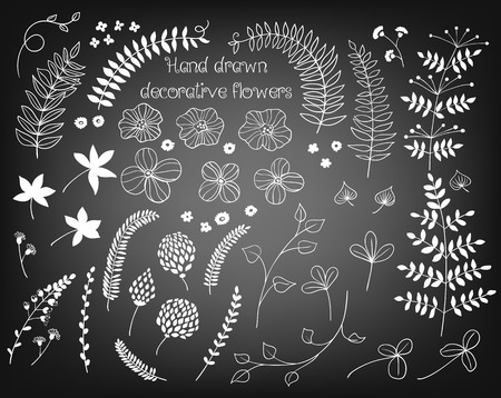flower leaf: Collection of various hand - drawn flowers on chalkboard background. Illustration