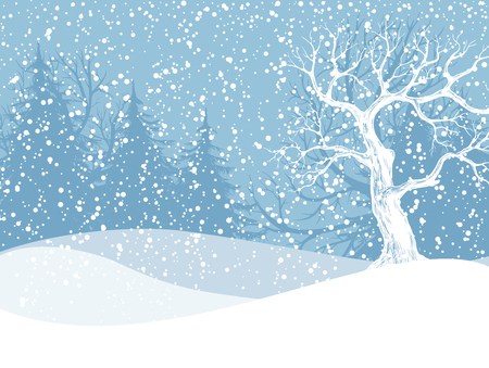 Winter landscape with fir trees and falling snow. Christmas illustration. Vector illustration contains gradient meshes. Ilustracja