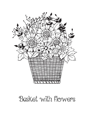 daisy: Hand drawn basket full of various flowers on white background.