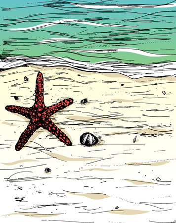 handdrawn: Hand-drawn summer illustration. Starfish on sand beach and sea.