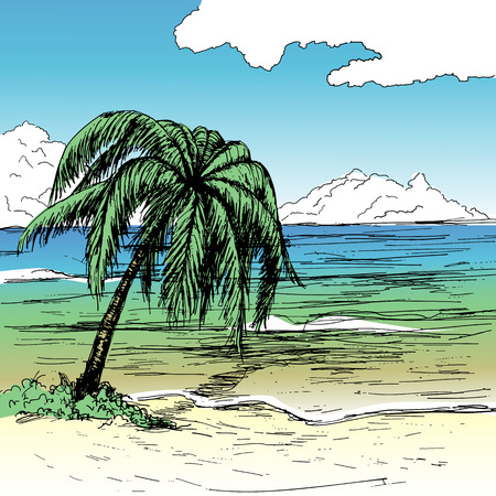 sunny beach: Hand-drawn summer illustration. Tropical beach with palm, sea and fluffy clouds on sunny day. Illustration