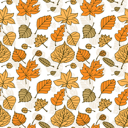 oak trees: Autumn pattern with various colorful leaves.