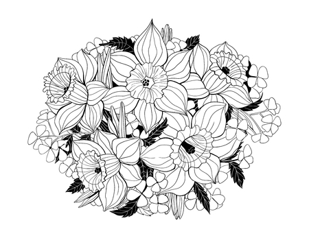 garden plant: Hand drawn bouquet of daffodils.  Spring flowers on white background