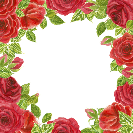 flower layout: Frame of red roses painted in watercolor. Template design for weding invitations, cards and more. White background with space for text.