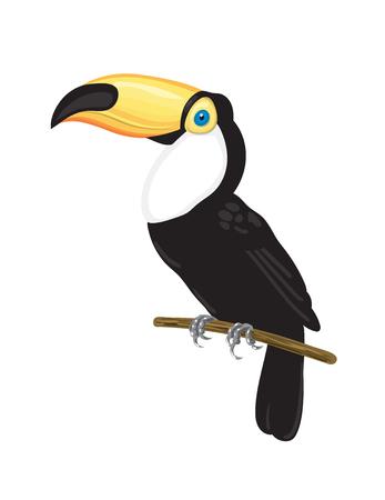 Toekan op tak. Tropische vogel vectorillustratie op witte achtergrond. Stock Illustratie