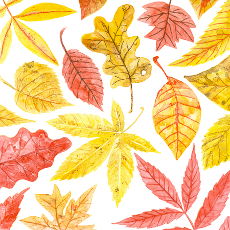Watercolor pattern made of various colorful autumn leaves.