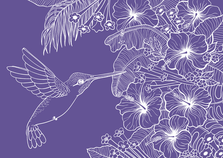 Hand drawn tropical background with hummingbird, leaves and flowers.