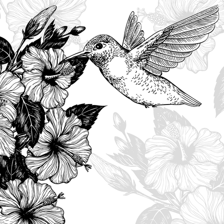 Hand drawn tropcal card with hibiscus flowers and hummingbird Template design.