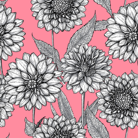 Seamless pattern made of hand drawn dahlia flowers Ilustrace