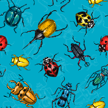 Seamless vector pattern made of various beetles, element for design.