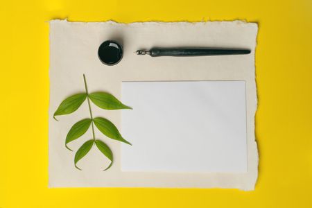 Lettering workshop details. The view from the top. tools for calligraphy on a bright yellow background. The concept of creative summer, comprehension and purity.
