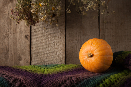Pumpkin, dry flowers and woolen scarf on wooden background, Thanksgiving, coutryside And Fall Background, copy space