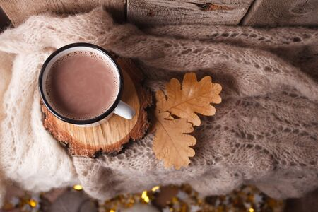 Cup of hot cocoa on rustic wooden bench with knitting soft scarf, closeup photo of warm sweater with mug leaves of oak, winter morning concept, top view