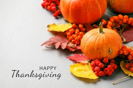 HAPPY THANKSGIVING, Autumn frame with dry leaves, natural and decorative pumpkins composition on gray background, seasonal halloween, thanksgiving holiday fall concept, copy space